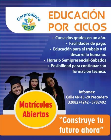 PUBLICIDAD EDUCACIÓN POR CICLOS (Custom)