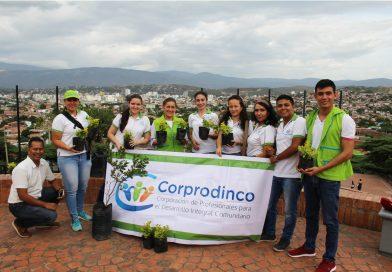 Seguimos Sembrando Esperanza en las comunidades, primera siembra de árboles comunitaria Monumento Loma de Bolívar